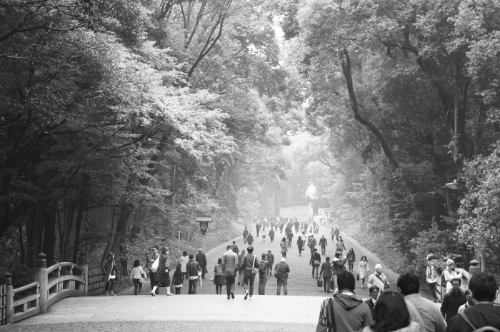 The walk to Meiji Shrine